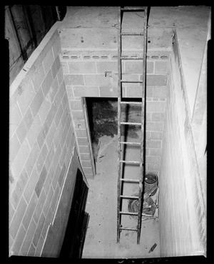 Primary view of object titled 'Ladder'.
