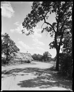 Primary view of object titled 'Lincoln Park'.