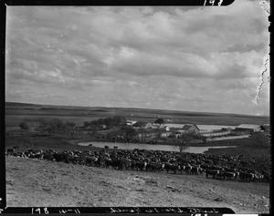 Primary view of Scott Sparks Ranch near Davis, Oklahoma