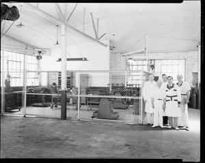 Primary view of object titled 'UNIDENTIFIED Men at Fred Jones Ford Company in Oklahoma City, Oklahoma'.
