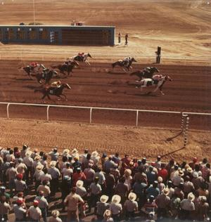 Primary view of object titled 'Horse Racing'.