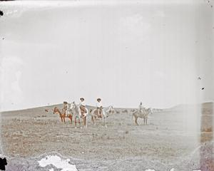Primary view of object titled 'Cowboys'.