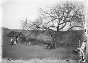 Primary view of object titled 'Farmstead'.