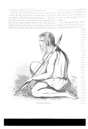 Primary view of Paiute Indian