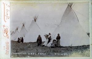 Primary view of Hummingbird's Camp