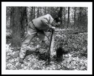 Primary view of object titled 'Forestry. Proper Planting of Pine Seedling'.