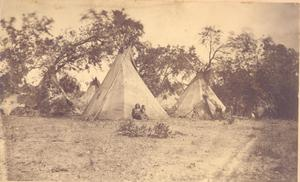 Primary view of Arapaho Camp