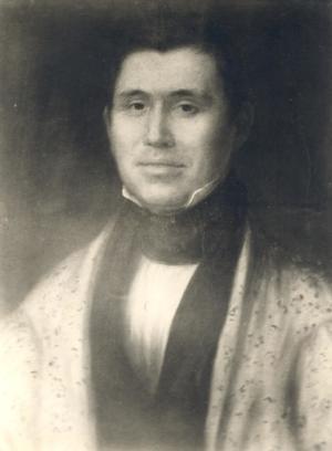 Primary view of Cherokee Rev. Jesse Bushyhead, a Cherokee