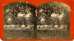 """Primary view of Tent Encampment """" Views in Indian Territory"""" (steroview)"""