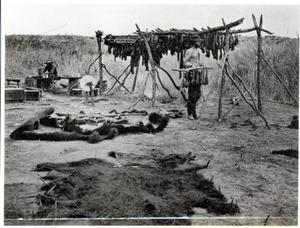 Primary view of Tougne Hunter's Camp