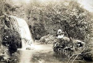 Primary view of object titled 'Price's Falls near Davis.'.