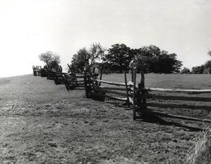 Primary view of object titled 'The split rail fence near Fort Washita, east of Madill, Ok.'.