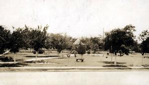 Primary view of object titled 'Central Park in Ardmore. (1)'.