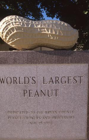Primary view of World's Largest Peanut