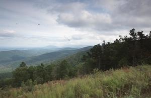 Primary view of Ouachita National Forest