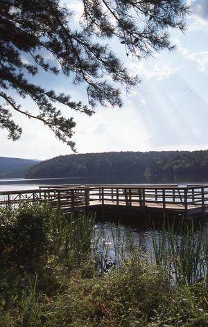 Primary view of Cedar Lake