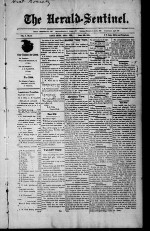 Primary view of object titled 'The Herald-Sentinel. (Cloud Chief, Okla. Terr.), Vol. 3, No. 27, Ed. 1 Saturday, June 9, 1894'.