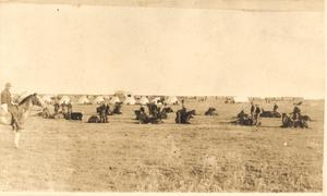 Primary view of object titled 'Cavalry Drill at Pond Creek in Grant County'.