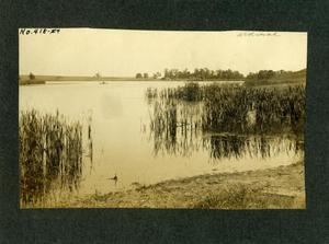 Primary view of object titled 'Lake or pond in Ardmore, Oklahoma.'.