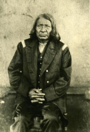 Primary view of object titled 'Penateka Comanche Chief Toshawa'.