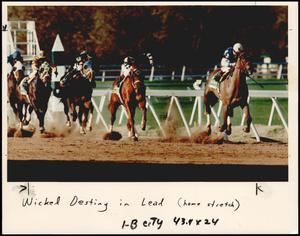 Primary view of object titled '[Photograph 2012.201.B0264.0195]'.