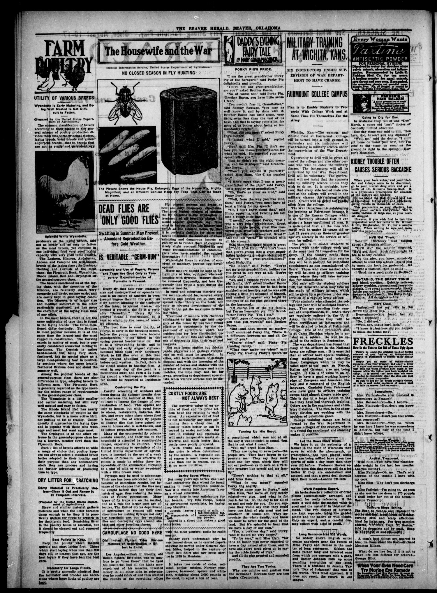 Beaver Herald (Beaver, Okla.), Vol. 32, No. 11, Ed. 1, Thursday, August 15, 1918                                                                                                      [Sequence #]: 2 of 12