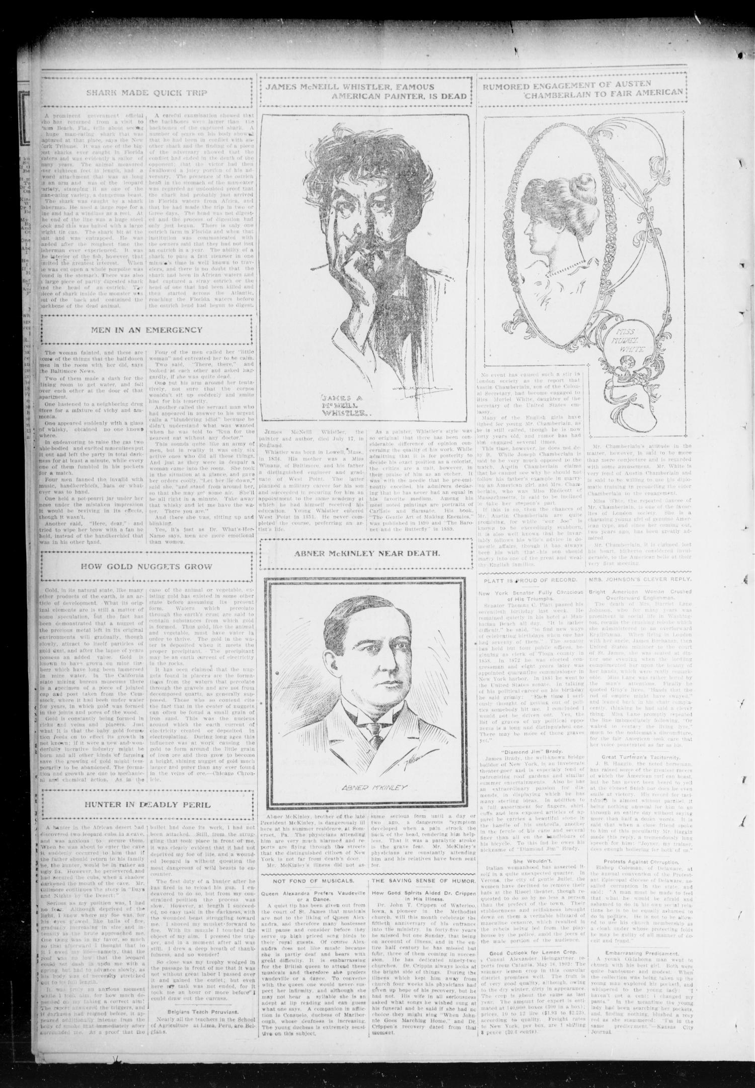 Chandler Daily Publicist. (Chandler, Okla. Terr.), Vol. 2, No. 110, Ed. 1 Friday, August 7, 1903                                                                                                      [Sequence #]: 4 of 4