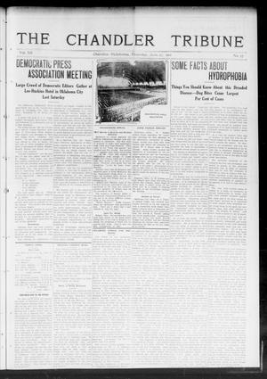 Primary view of object titled 'The Chandler Tribune (Chandler, Okla.), Vol. 12, No. 17, Ed. 1 Thursday, June 27, 1912'.