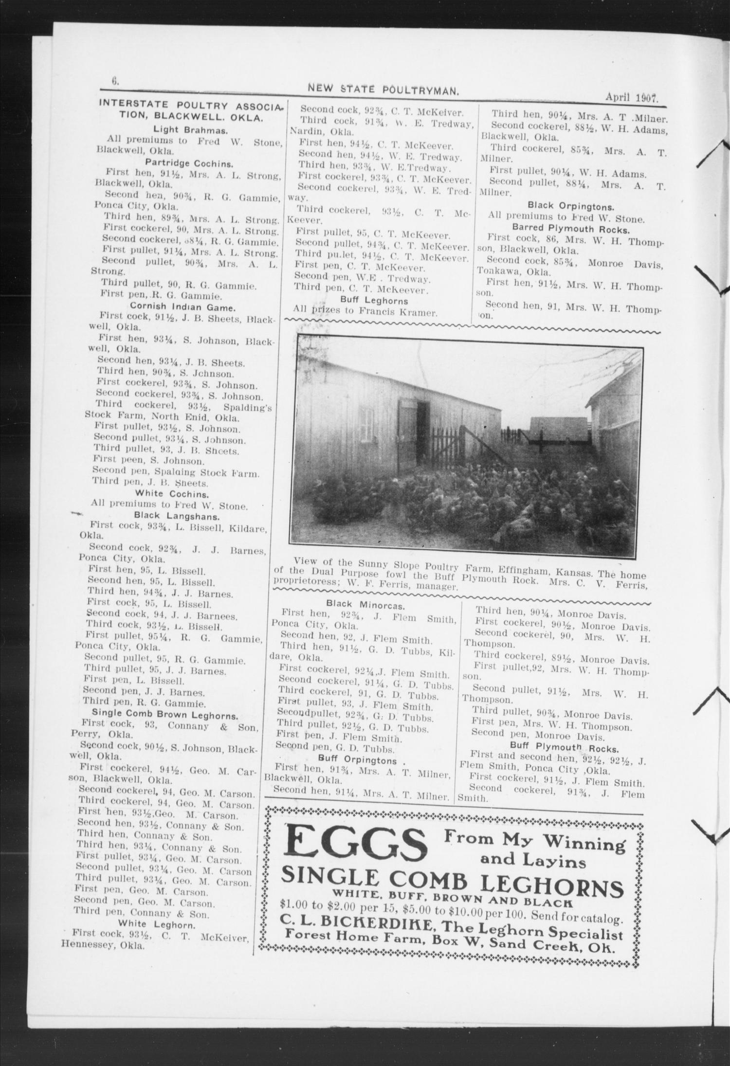 New State Poultryman. (Oklahoma City, Okla.), Vol. 1, No. 9, Ed. 1 Monday, April 1, 1907                                                                                                      [Sequence #]: 4 of 18