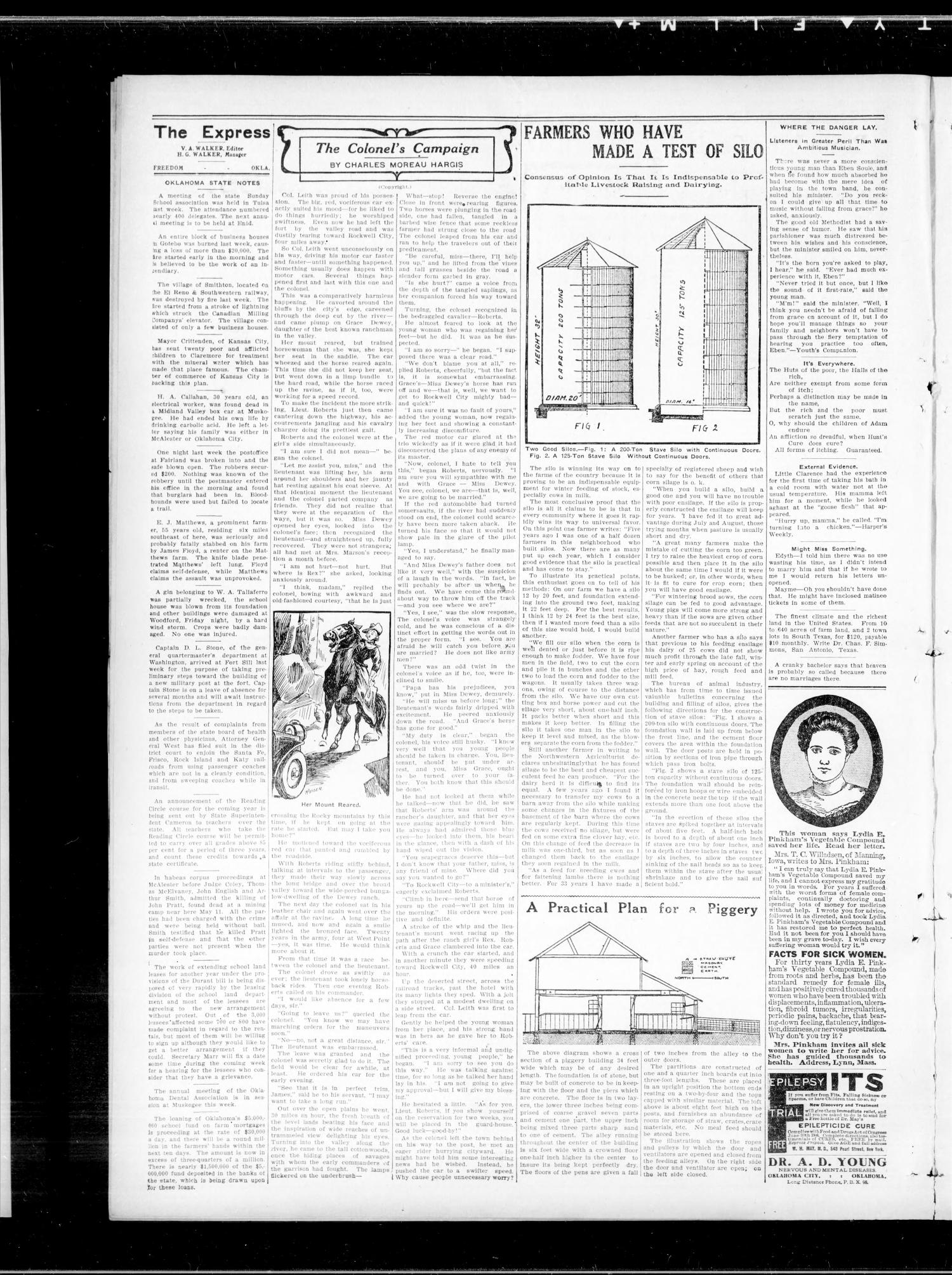 The Freedom Express. (Freedom, Okla.), Vol. 3, No. 10, Ed. 1 Thursday, June 18, 1908                                                                                                      [Sequence #]: 2 of 4