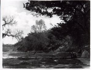 Primary view of object titled 'Mineral Springs in Government Park in Enid, Oklahoma'.