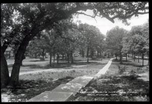 Primary view of object titled 'Walkway at the Chickasaw National Park Recreation Area near Sulphur, Oklahoma'.