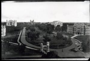 Primary view of object titled 'North Oval of the University of Oklahoma on Boyd Street looking south. The library can be seen in the background center left.'.
