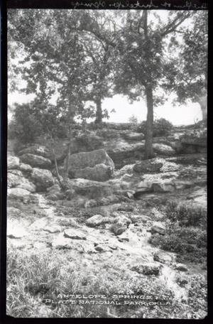 Primary view of object titled 'Antelope Springs at the Chickasaw National Park Recreation Area near Sulphur, Oklahoma'.