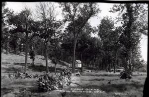 Primary view of object titled 'Park Scene in Sand Springs, Oklahoma'.