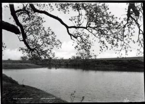 Primary view of object titled 'Belle Isle Park in Oklahoma City'.