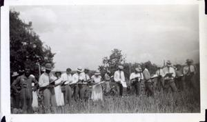 Primary view of object titled 'African Americans at a Garden Judging School'.