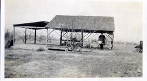 Primary view of object titled 'Packing Shed in Elberta Peach Orchard'.