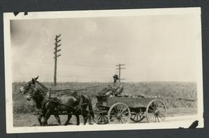Primary view of object titled 'African American Farmer Driving Wagon'.