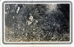 Primary view of object titled 'Woman amidst foliage'.