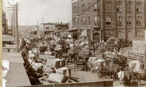 Primary view of object titled 'Cotton Market in Guthrie'.