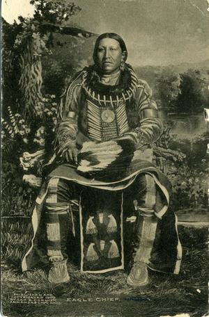 Primary view of object titled 'Eagle Chief, Pawnee Indian'.