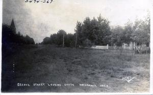 Primary view of object titled 'Waukomis, 2nd Street Looking South'.
