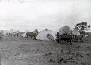 Primary view of object titled 'Arapaho or Cheyenne Camps'.
