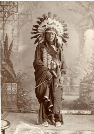 Primary view of object titled 'Little Wolf, Sioux Chief'.