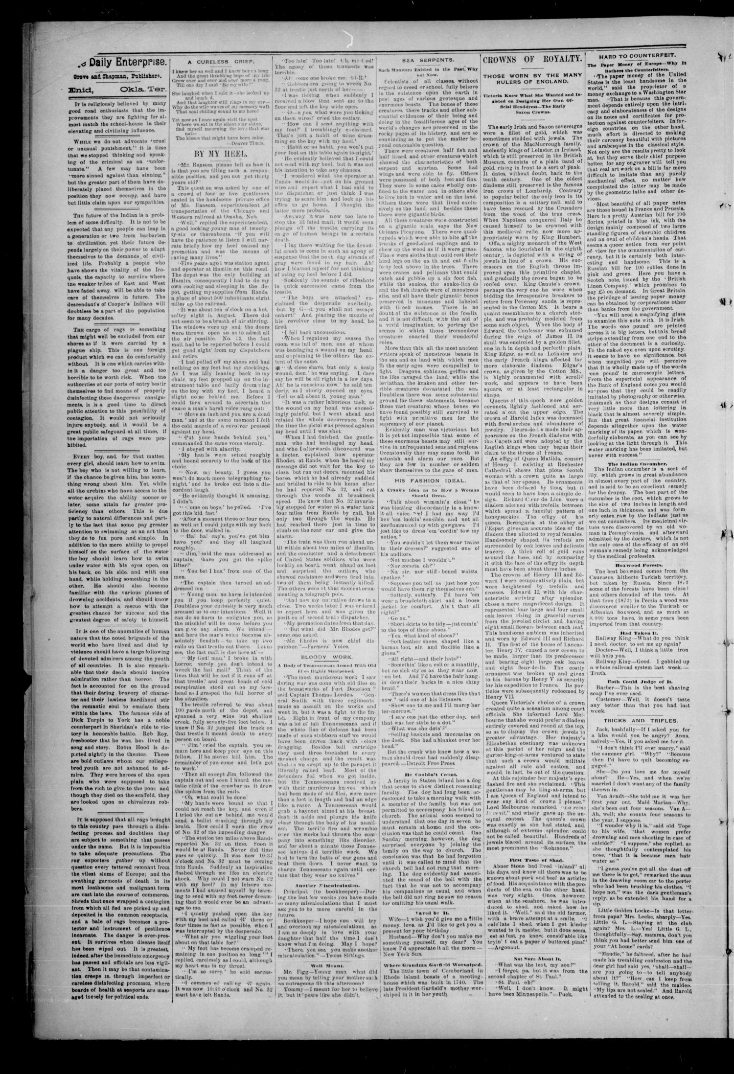The Daily Enterprise. (Enid, Okla. Terr.), Vol. 1, No. 44, Ed. 1 Wednesday, November 8, 1893                                                                                                      [Sequence #]: 2 of 4